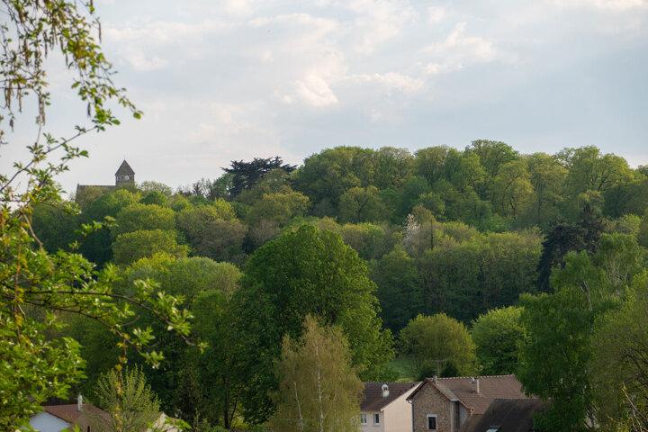 Vue verdoyante sur l'Abbaye