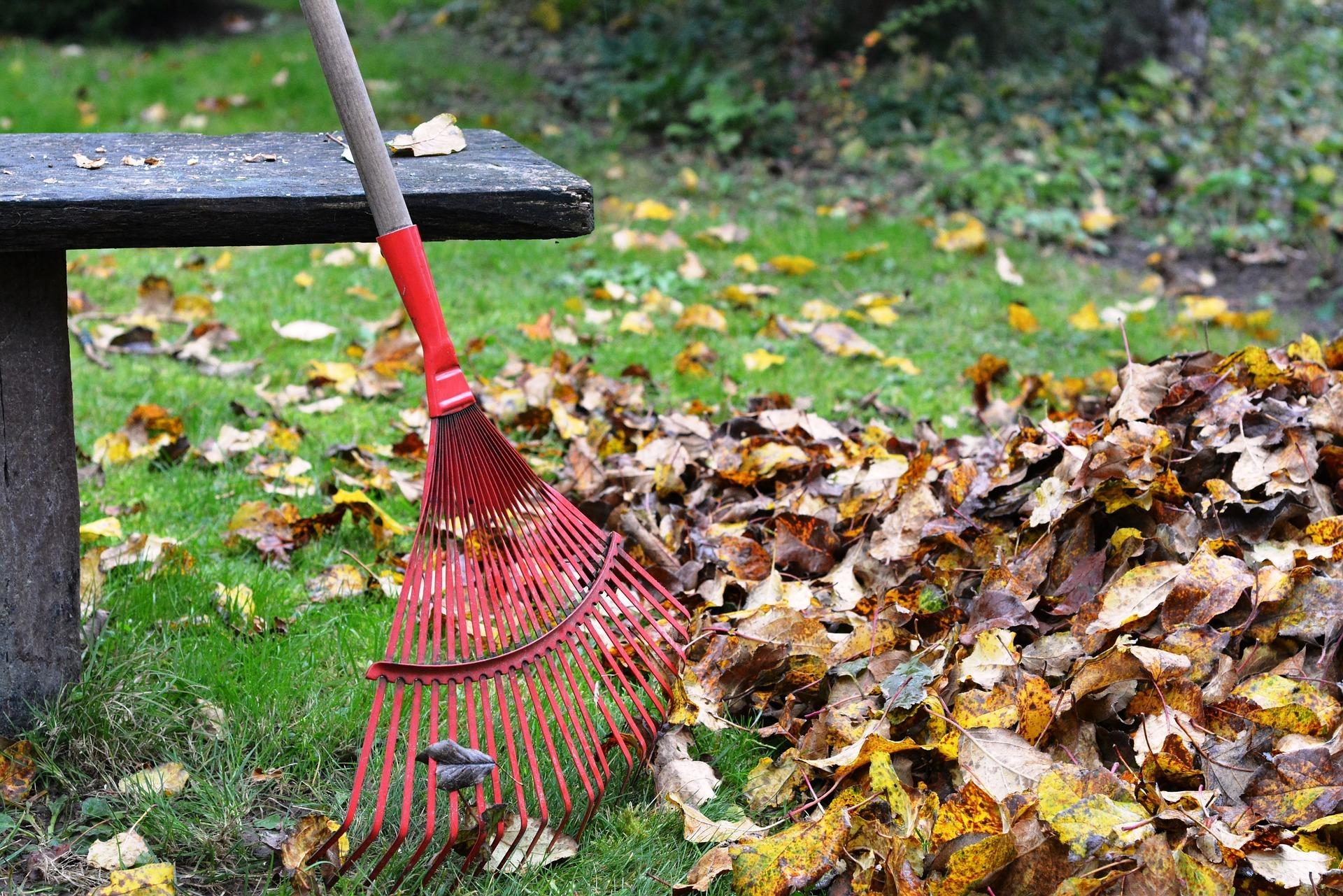 Balai ramasse feuilles